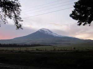 Chimborazo_9