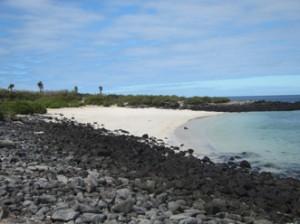 IMG 4786-300x224 in ... Galapagos!
