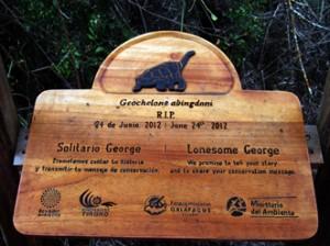 IMG 4881-300x224 in ... Galapagos!