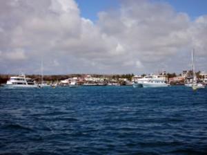 IMG 4917-300x224 in ... Galapagos!