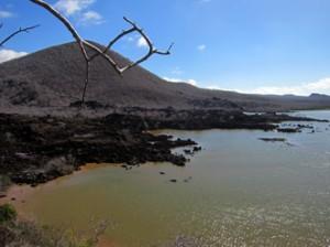 IMG 4957-300x224 in ... Galapagos!