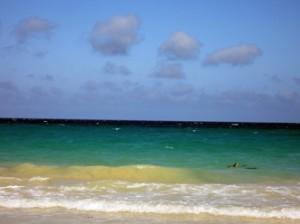 IMG 4970-300x224 in ... Galapagos!