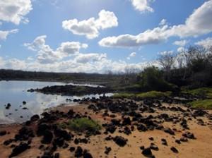 IMG 5021-300x224 in ... Galapagos!