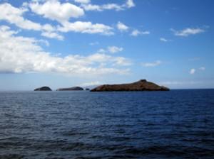 IMG 5061-300x224 in ... Galapagos!