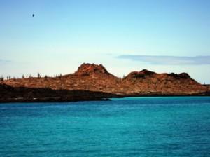 IMG 5081-300x224 in ... Galapagos!