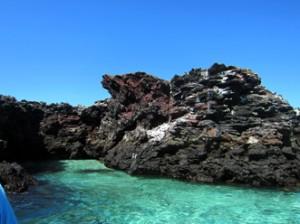 IMG 5109-300x224 in ... Galapagos!