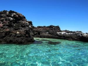 IMG 5112-300x224 in ... Galapagos!