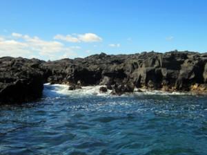 IMG 5114-300x224 in ... Galapagos!