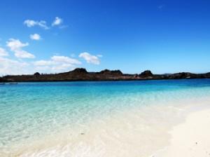 IMG 5120-300x224 in ... Galapagos!