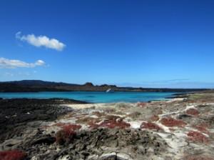 IMG 5131-300x224 in ... Galapagos!