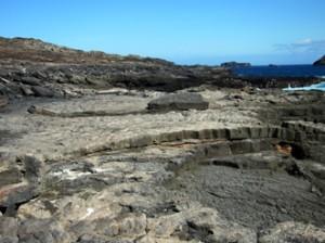 IMG 5134-300x224 in ... Galapagos!