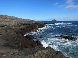 IMG 5136-300x224 in ... Galapagos!