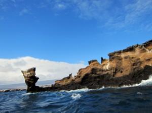 IMG 5169-300x224 in ... Galapagos!