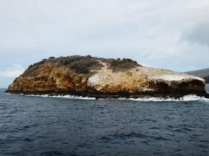 IMG 5223-300x224 in ... Galapagos!