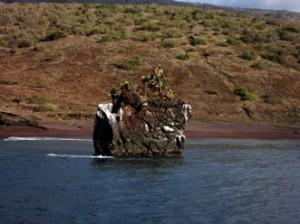IMG 5275-300x224 in ... Galapagos!