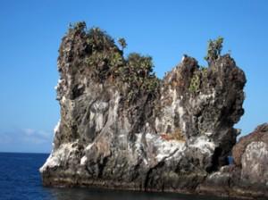 IMG 5288-300x224 in ... Galapagos!