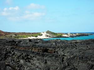 IMG 5463-300x224 in ... Galapagos!