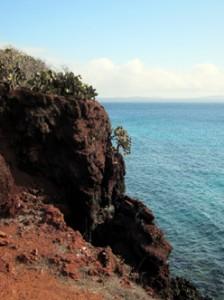 IMG 5500-224x300 in ... Galapagos!