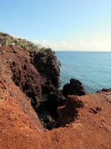 IMG 5501-224x300 in ... Galapagos!