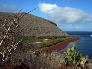 IMG 5502-300x224 in ... Galapagos!