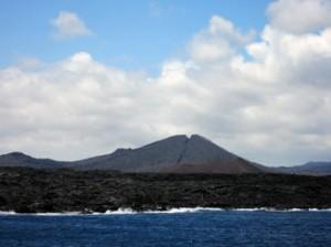 IMG 5533-300x224 in ... Galapagos!