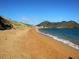 IMG 5555-300x224 in ... Galapagos!