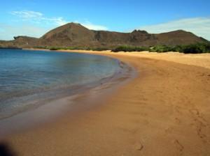 IMG 5575-300x224 in ... Galapagos!