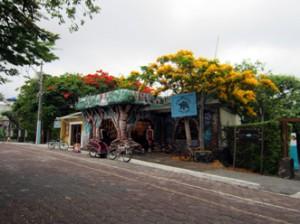 IMG 5650-300x224 in ... Galapagos!