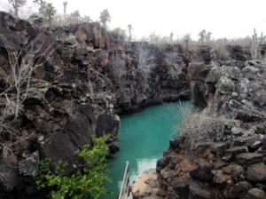 IMG 5673-300x224 in ... Galapagos!