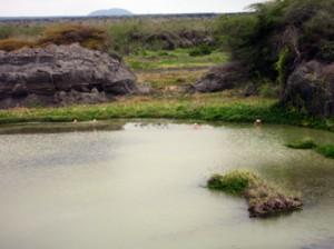 IMG 5695-300x224 in ... Galapagos!