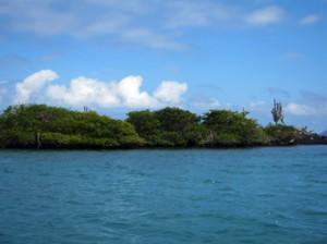 IMG 5744-300x224 in ... Galapagos!
